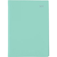 SOHO 2019 DIARY DAY TO PAGE 1/2HR APPOINTMENTS A5 TEAL