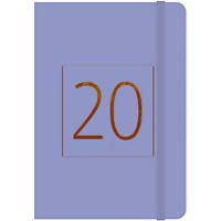 ESSEX 2019 DIARY CASEBOUND WEEK TO VIEW A5 PURPLE